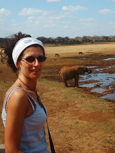 incontri ravvicinati con gli elefantini