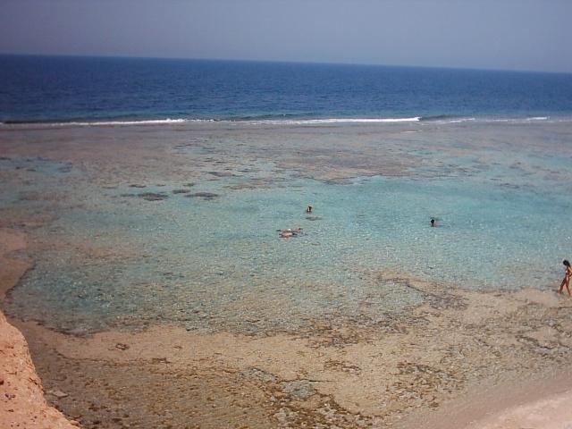 la barriera corallina dall'alto